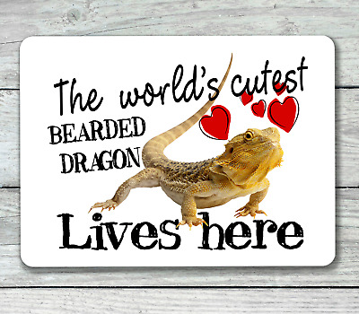 World's cutest bearded dragon lives here hanging or fixed sign aluminium metal
