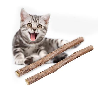 20 PCS Cat Snacks Matatabi Chew Catnip Stick Teeth Molar Cleaning Brush Pet Toy