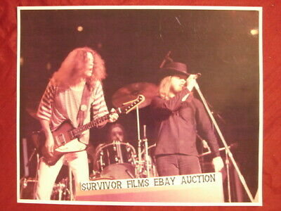 Allen Collins Ronnie Vanzant Live In Concert 8 X 10 Color Photo * Lynyrd Synyrd