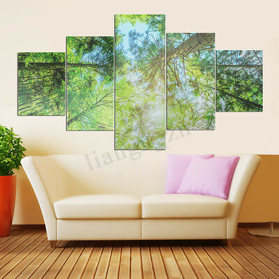 5Pcs Modern Forest Wall Art Picture Canvas Print Painting Home Decor Unframed AU