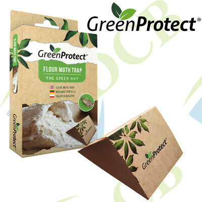 Green Protect Flour Moth Trap Indoor Sticky Catcher Easy To Use
