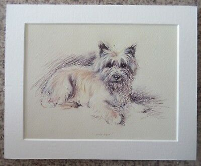"""Lucy Dawson (Mac) Andrew - 8""""x10"""" Mounted Art Print - Dog Sketch Picture"""