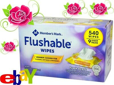 Members Mark Flushable Wipes (9 pk, 540 wipes) free fast Shipping