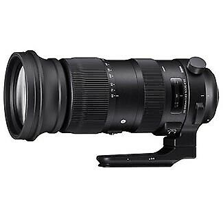 Sigma 60-600mm F4.5-6.3 DG OS HSM Sports  Lens for Nikon 730955