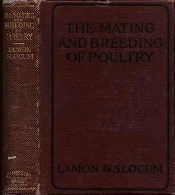 Mating Breeding Of Poultry Lamon & Slocum 1922 Chicken Husbandry Care Guide Book