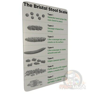 Bristol Stool Scale (Doctor, Nurse, Student, Paramedic) pocket reference card