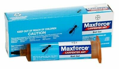 Maxforce Carpenter Ant Bait Gel Professional Capenter Ant Killer Bait Gel Bayer