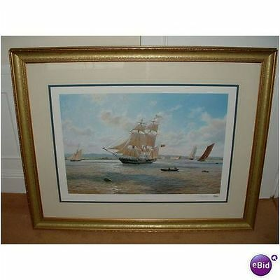 Steven Dews Framed Ltd Edition Print Phoenix Signed Nr