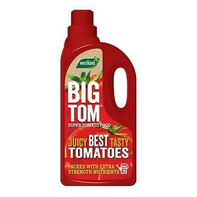 Westland Big Tom Concentrated Tomato Feed For Juicy Best Tasty Tomatoes