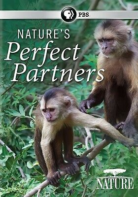 Nature: Nature's Perfect Partners (DVD,2016)