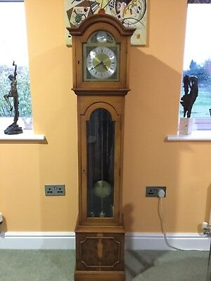 LONGCASE GRANDDAUGHTER CLOCK  Yew Veneer Westminster Chime