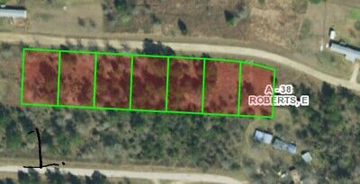 2 Acres Campsite, Land, Getaway, Retirement, Vacation Property Lake Livingston