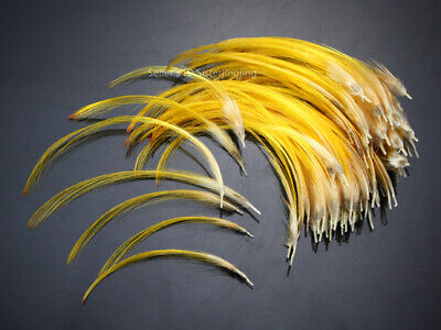 Golden Pheasant Crest Feathers Natural Fly tying ;over 9cm 50 pcs,C20105x2 Feathers Baits, Lures & Flies