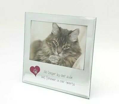 Loss of Pet Cat Bereavement Photo Picture Frame No Longer By Our Side
