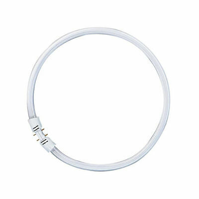 Osram Leuchtstofflampe T5 FC Circline Ring Lumilux 2GX13 Ringröhre Ringlampe