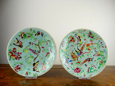 Two Antique Chinese Celadon Porcelain Plates Canton Famille Rose Export 19thC