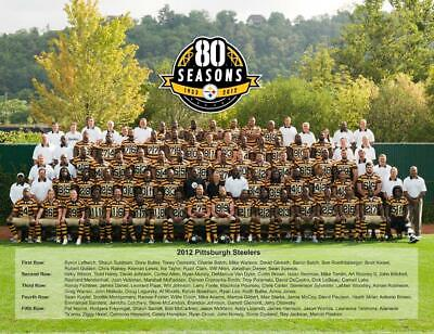 Pittsburgh Steelers 2012 Season Rare Team Video Dvd With Color 8X10 Team Photo