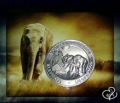 2017 1/4 oz AUTHENTIC Silver Somalia Elephant Specimen Coin - w/Capsule Included