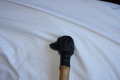 Dog head (resin)handle walking stick