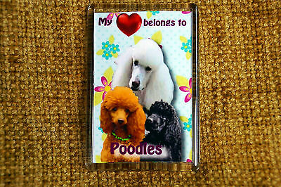 Apricot Poodle Bookmark AD-CP7BM Book Mark Christmas Stocking Filler//Birthday