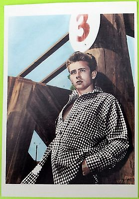 JAMES DEAN: Photo Post Card (4¼ x 6 in.) Vintage - New; Out of print