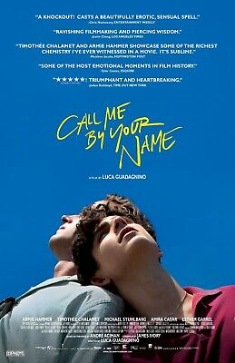 Call Me By Your Name poster  - Armie Hammer, Timothee Chalamet  - 11 x 17 inches