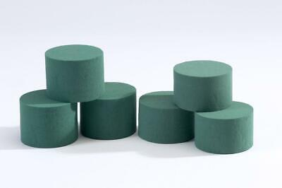 6 x Oasis Ideal Round Cylinder Wet Foam. Florist Floral Craft Flowers /...