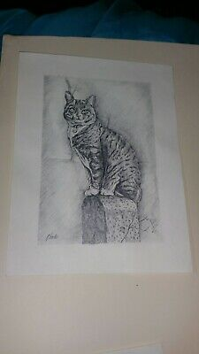 ORIGINAL PENCIL DRAWING Tabby Cat Signed A.Fowler