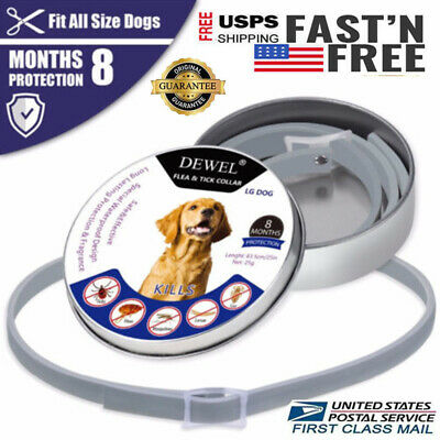 63cm DEWEL Pro Guard Flea Tick Collar for Small Large Dogs 8 Month Protection