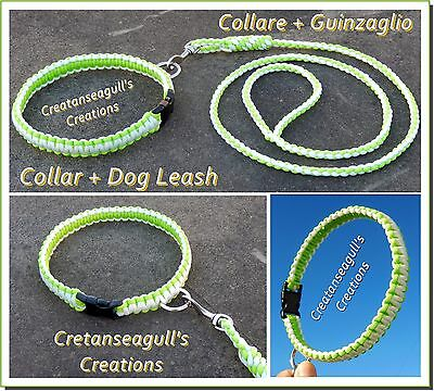 Collare + guinzaglio per cani (Collar + Dog leash)