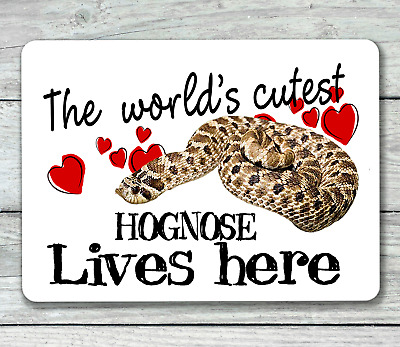 Western hognose snake sign world's cutest reptile hanging or fixed aluminium