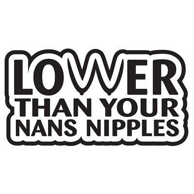 """/""""Lower than your nans Nipples/"""" vinyl decal for cars vw t4 t5 fun sticker 5011wt"""