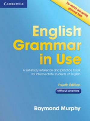 English Grammar in Use Without Answers by Raymond Murphy