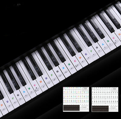 Removable Piano and Keyboard Stickers for 49 61 76 88 Transparent
