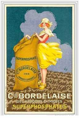Publicitaire.illustrateur .superphosphates.cie a la Bordalesa