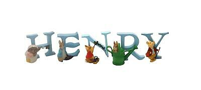 Official Licensed Beatrix Potter Peter Rabbit Boys Name Henry Alphabet Letters