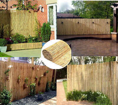 Decorative Natural Peeled Reed Fence Wooden Garden Screen Fence Privacy 2m x 4m
