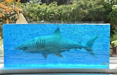 great white shark art sculpture by Garry White for shelf or window sill