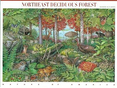 US 2005 Nature of America Northeast Deciduous Forest; 37 Cents, MNH Sc 3899