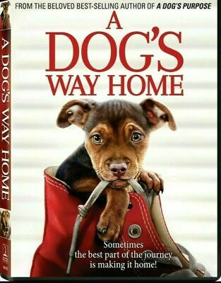 A Dog's Way Home (DVD,2019) NEW-Drama, Family- FREE SHIPPING!!!!! (Disc Only)
