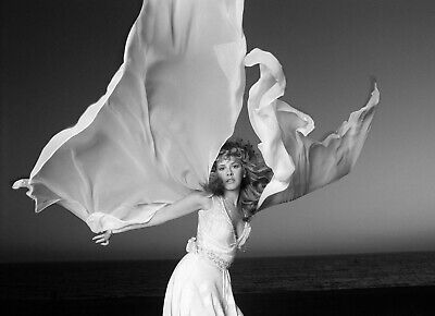 Stevie Nicks 8X10 Glossy Photo Picture Image #4