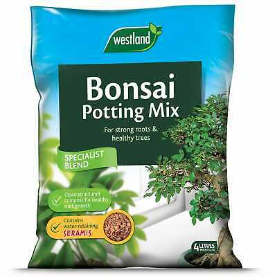 Westland Bonsai potting Mix 4L