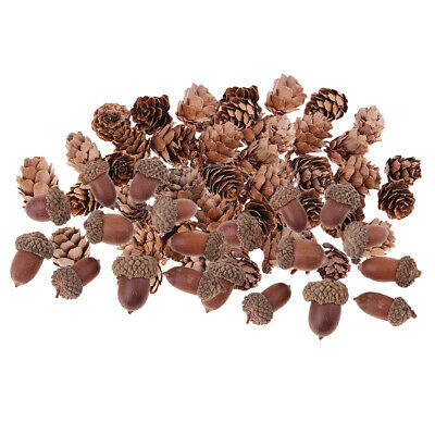 40x Natural Decorative Pinecone Dried Acorn Party Hanging Decors 15 -25 mm