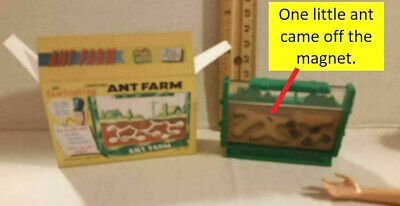 Barbie Doll 1:6 Miniature Ant Farm Toy for Tommy or Kelly