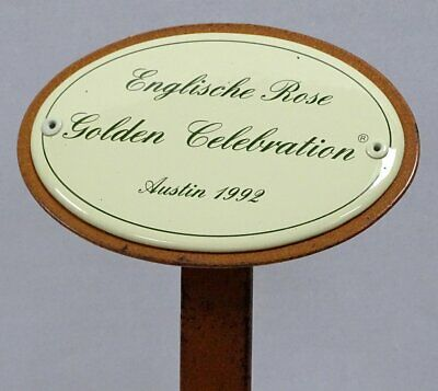 Rosenschild Emaille, Englische Rose Golden Celebration, Austin 1992