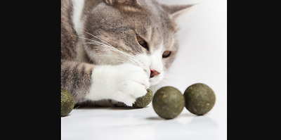Natural Catnip Mouse Bite Toy Ball | Playful Treats | 1ct | Shipping from US
