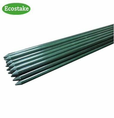 ECOSTAKE GARDEN STAKES 4 ft Plant Stakes for Tomato Orchid Sunflower
