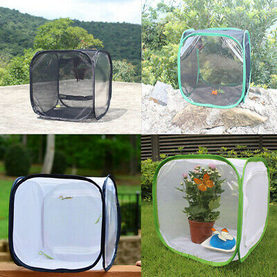 UK Foldable Mesh Insect Hatchery Cage Net For Insect/butterfly/Praying mantis