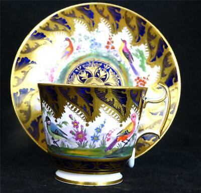 N978 C1810 Antique English Porcelain Cup Saucer Exotic Birds Coalport