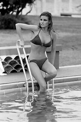 Raquel Welch 8X10 Glossy Photo Picture Image #9